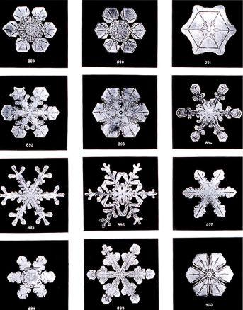 704px-SnowflakesWilsonBentley